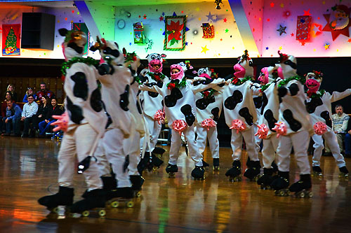 Cows In Formation